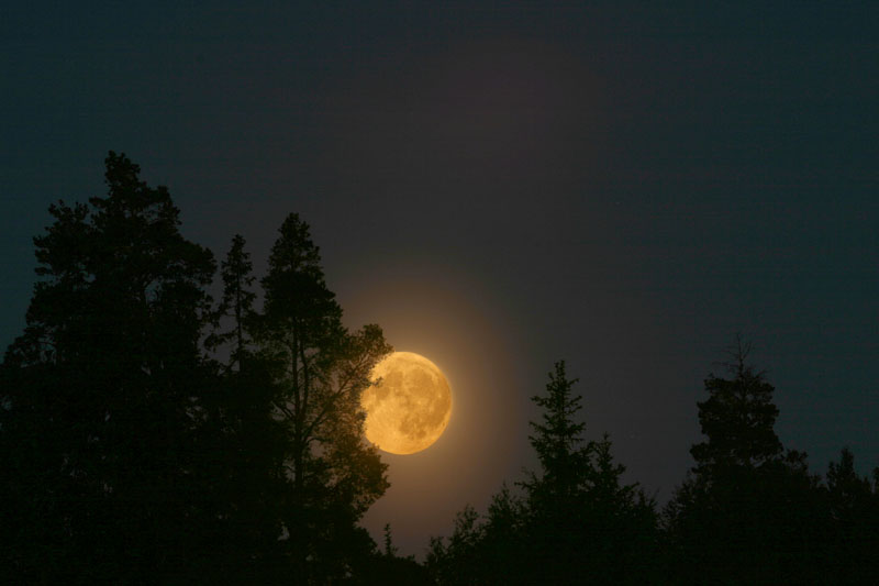 Vollmond[1]